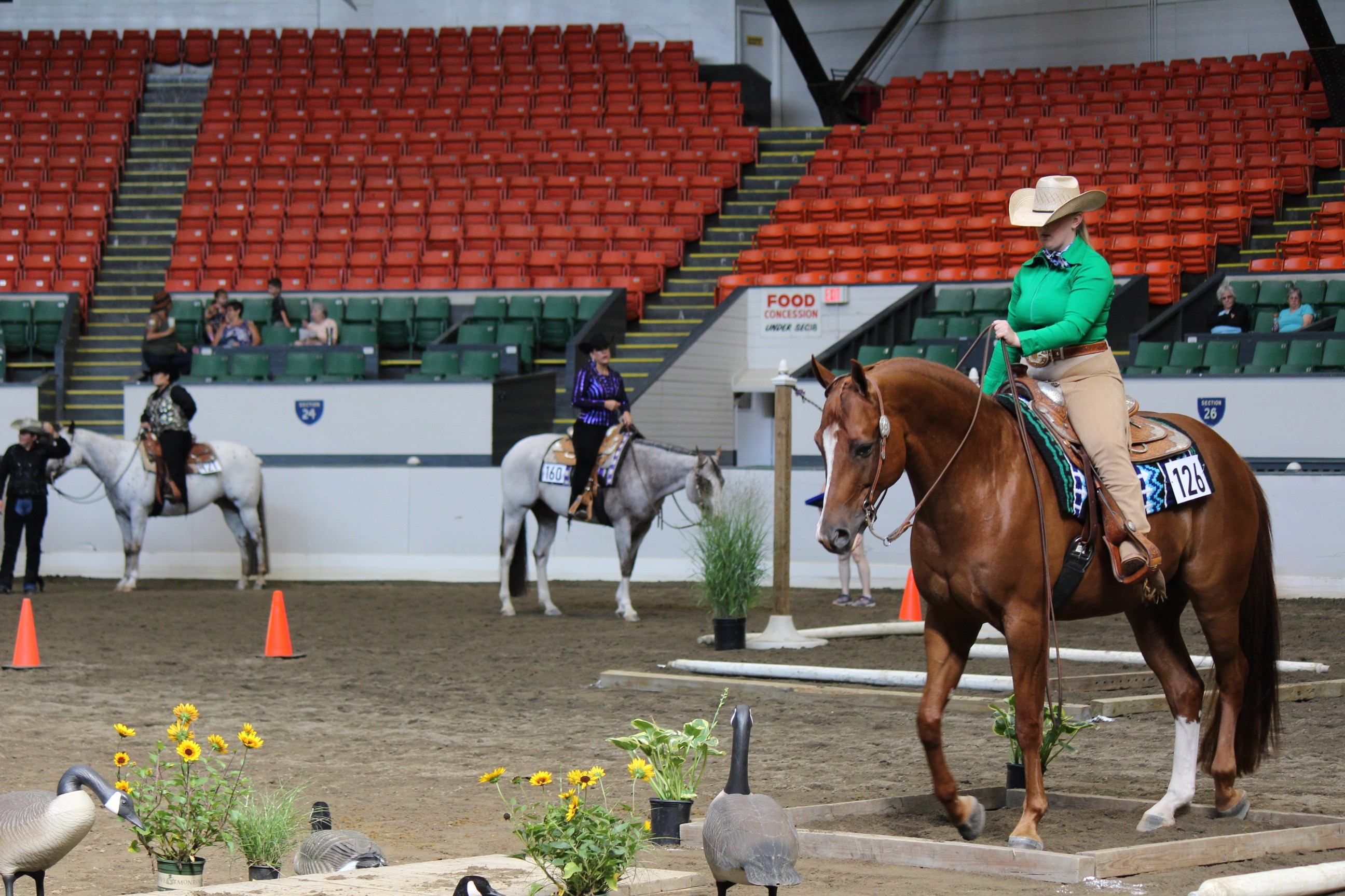 Yankee Color Classic brings horses to the Eastern State Expo